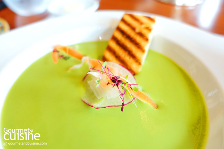 Chilled English Pea Veloute