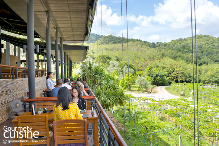The Sala Wine Bar and Bistro