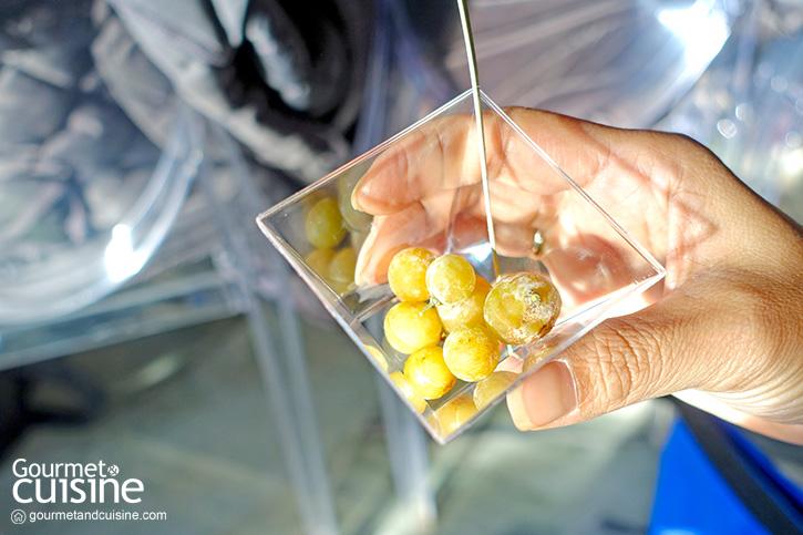 Moscato d'Asti Experience Part 1 : รู้จักไวน์มอสกาโต้
