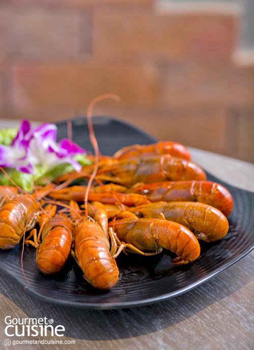 Chubby Crayfish