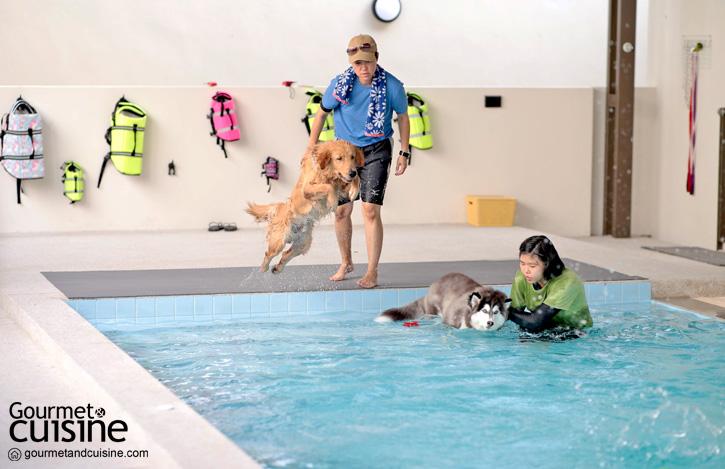 TRAIL and TAIL สถานที่แห่งใหม่สำหรับคนรักสัตว์เลี้ยงย่านสุขุมวิท