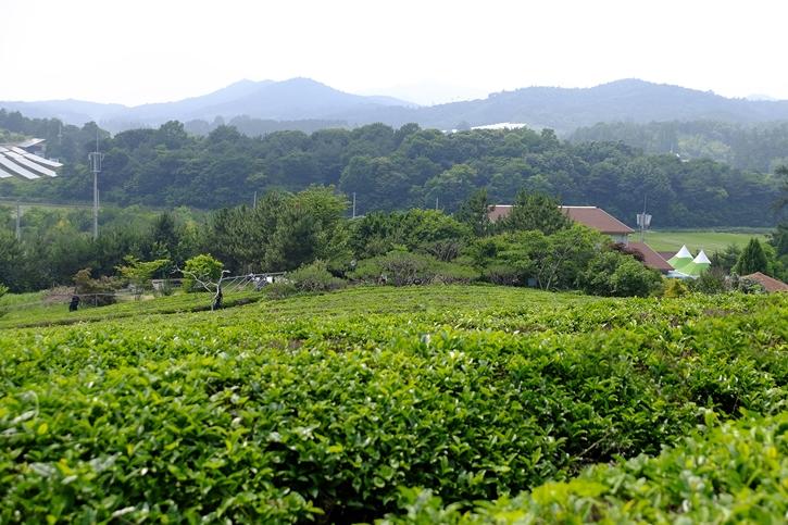เที่ยวแตกต่างอย่างลงตัวที่ Korea Village Experience