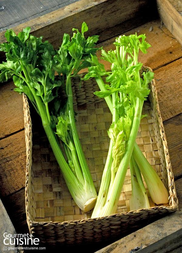 ตามกระแส Celery Juice Drink ดื่มอย่างไรเพื่อให้เกิดผลดีต่อร่างกาย