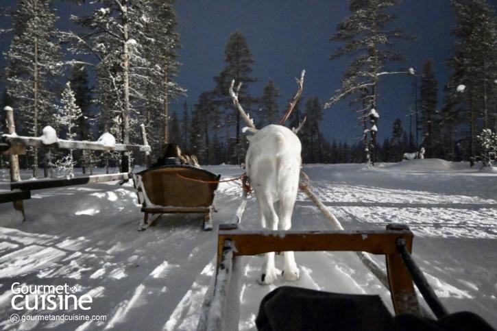 ฟินยังไงเมื่อไปฟินแลนด์  ฟินยังไงเมื่อไปฟินแลนด์