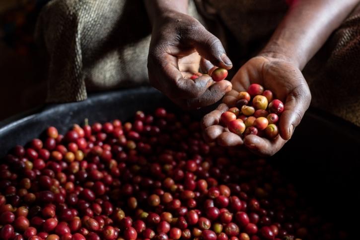 Reviving Origins กาแฟ 3 รสชาติใหม่จาก Nespresso