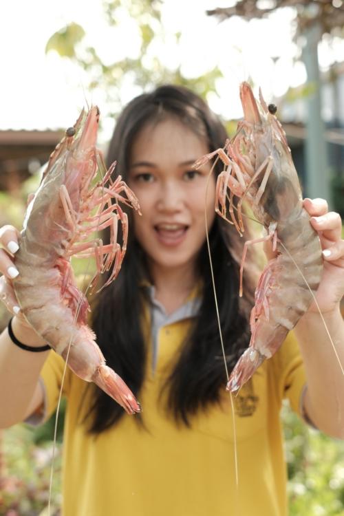 """Mermaid Chef""  สื่อกลางความสัมพันธ์ของครอบครัว"