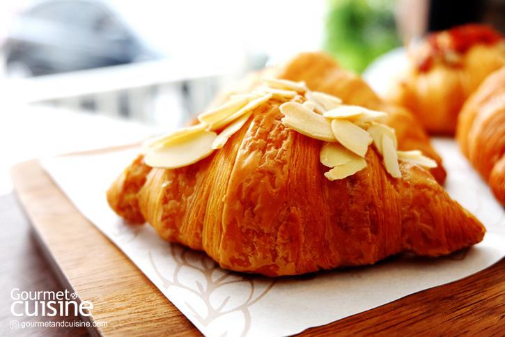 House of Susan Croissant