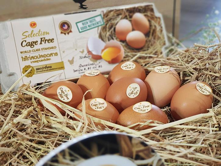 ไข่ไก่เคจฟรี ซีพีเอฟ จากแม่ไก่อารมณ์ดี เลี้ยงแบบธรรมชาติ เพื่อสุขภาพที่ดีของผู้บริโภค