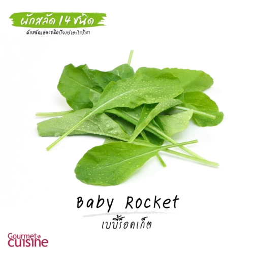เบบี้ร็อคเก็ต Baby Rocket