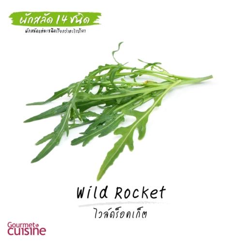 ไวล์ดร็อคเก็ต Wild Rocket หรือ Arugula