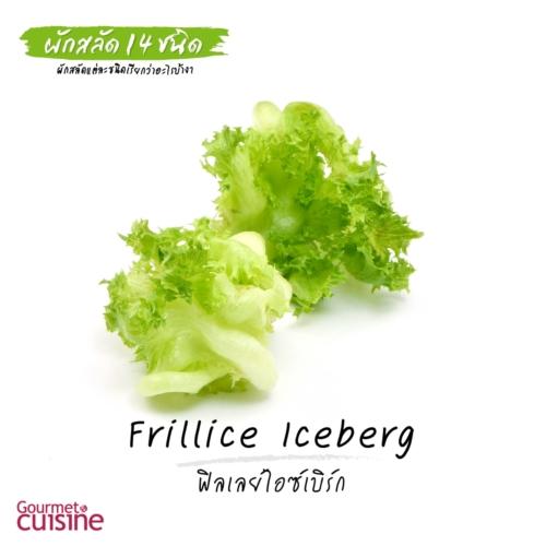 ฟิลเลย์ไอซ์เบิร์ก Frillice Iceberg Lettuce