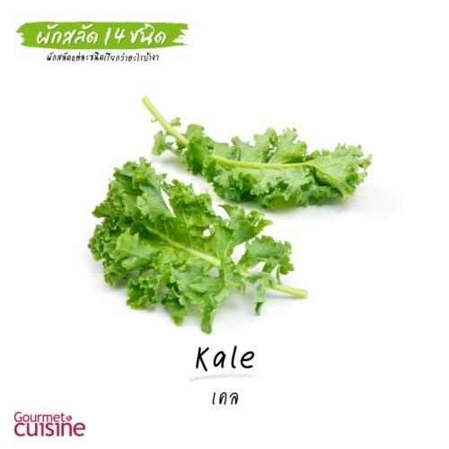 เคล Kale