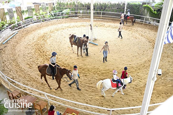 The Hay Equestrian Center & Eatery ขี่ม้าในร้านโปรดของครอบครัว