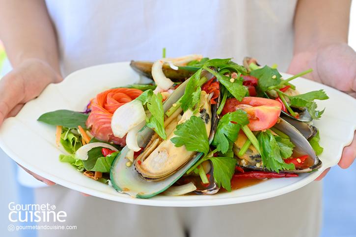 The Aileen Café & Restaurant คาเฟ่ของคนรักธรรมชาติ