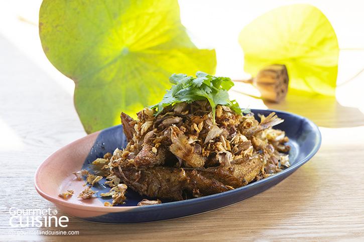 นิวาส Café & Bistro สถานที่พักพิงของคนรักอาหารไทยในซอยนาคนิวาส 24