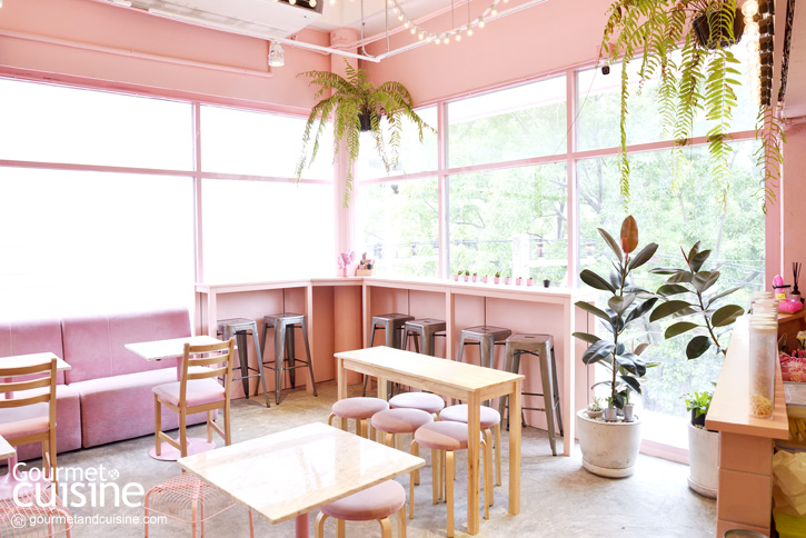 Pinkplanter X Bonca Cafe