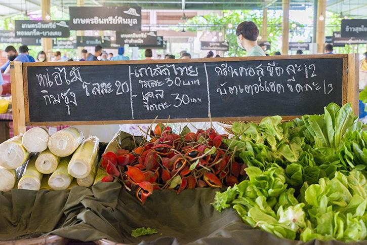 Green Nakhon Pathom กรีนดี อยู่ดี ที่นครปฐม