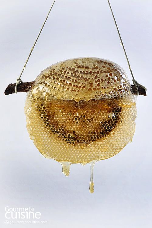 ประวัติศาสตร์ของน้ำผึ้ง