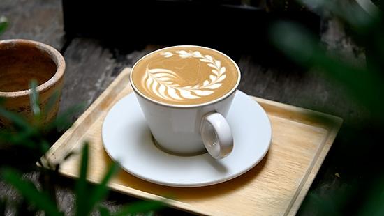 คาเฟ่สุดร่มรื่นย่านเทเวศน์ Unbranded Cafe @พระนครนอนเล่น